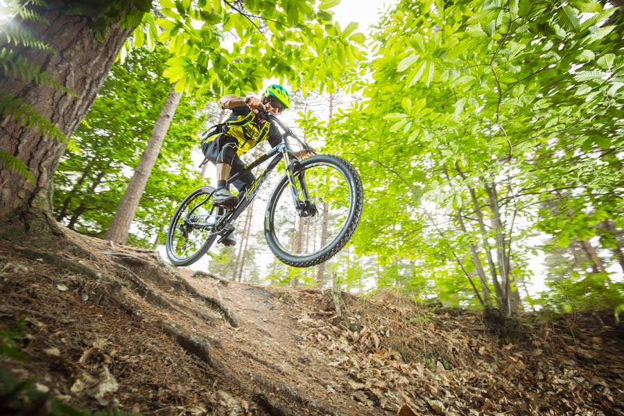 Best hardtails for under a grand: Whyte 800-series 2019 mountain bikes