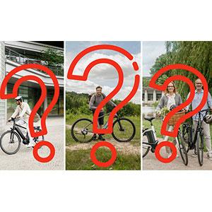 Should I Buy an Electric Bike?