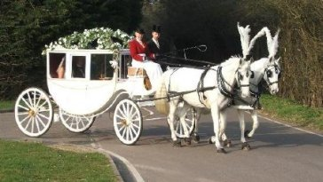 A horse-drawn carriage: Less bang for your buck