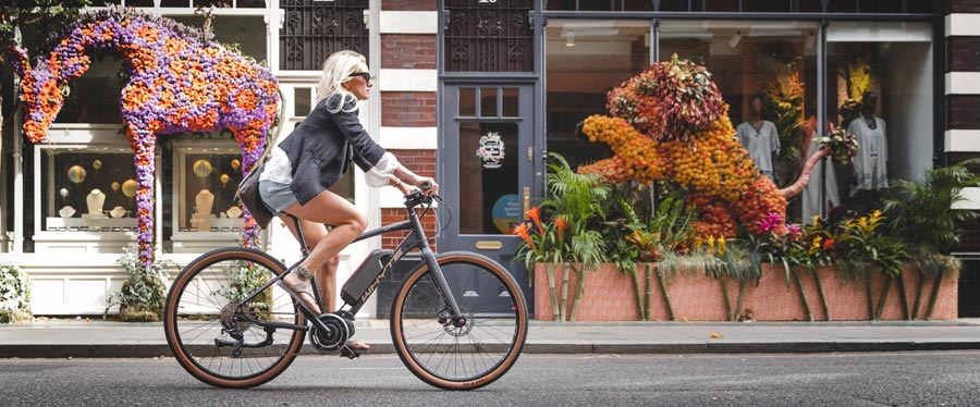 Highgate Womens E-Bike