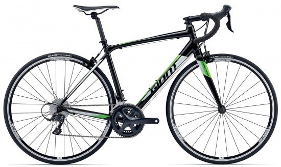 Giant Contend 1 2017